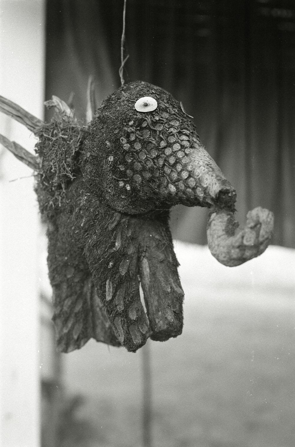 eleph